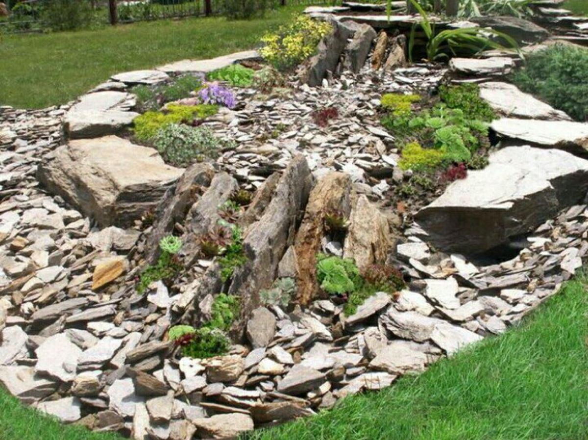 Как выбрать камни и флору для альпинария 354