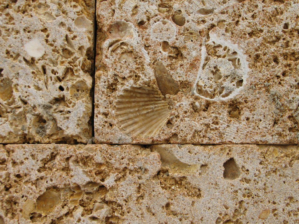 Ракушечник – природный камень для малоэтажного строительства 1769