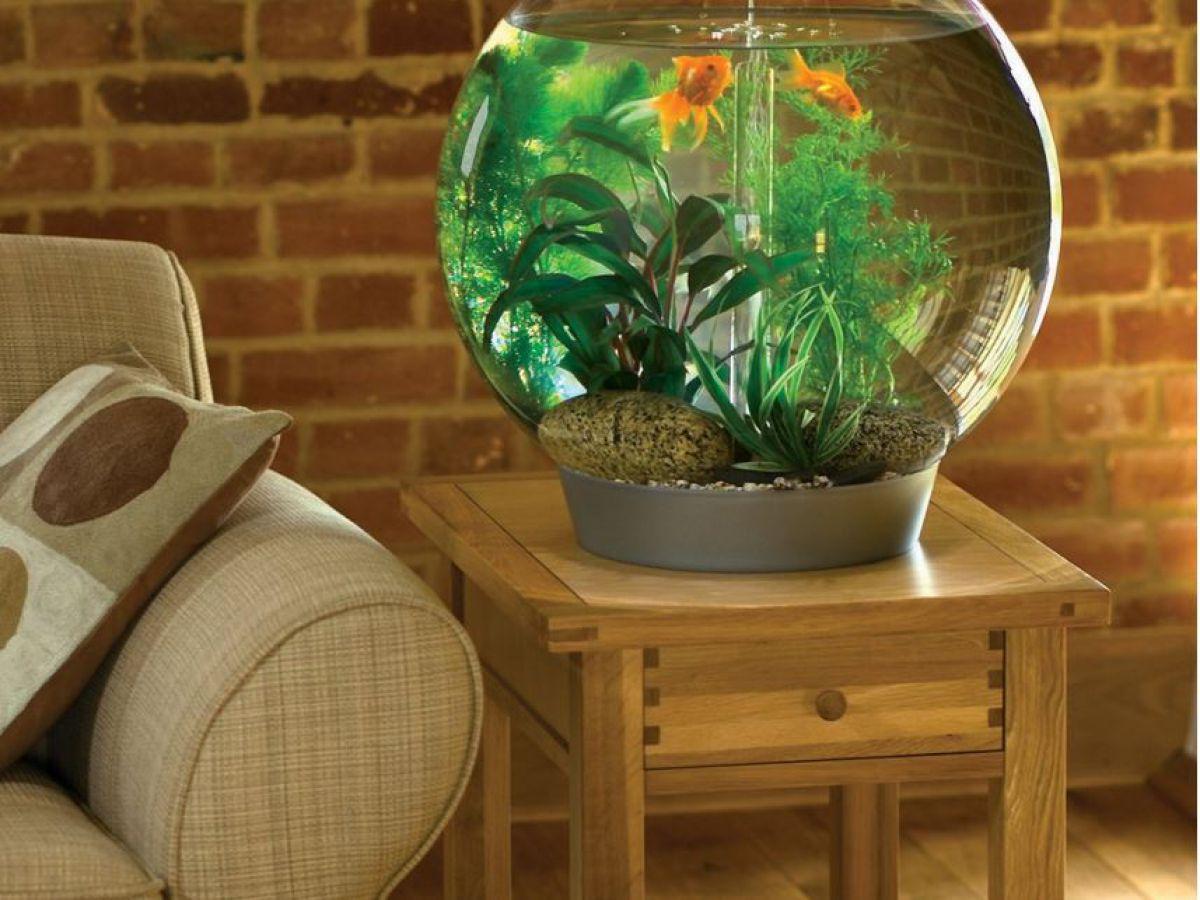 Аквариум в доме: настоящий или имитация. Интерьеры с аквариумами 4049