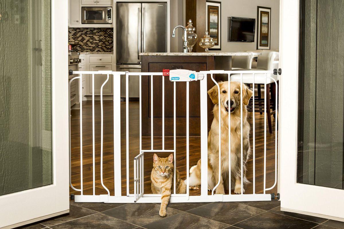 Дом, лестница, дети. Защита лестниц от детей 4340