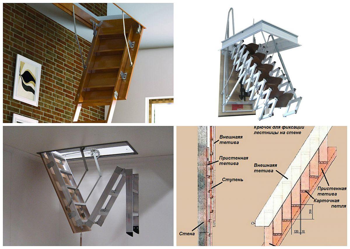 Лестница на чердак. Конструкции и варианты 4353