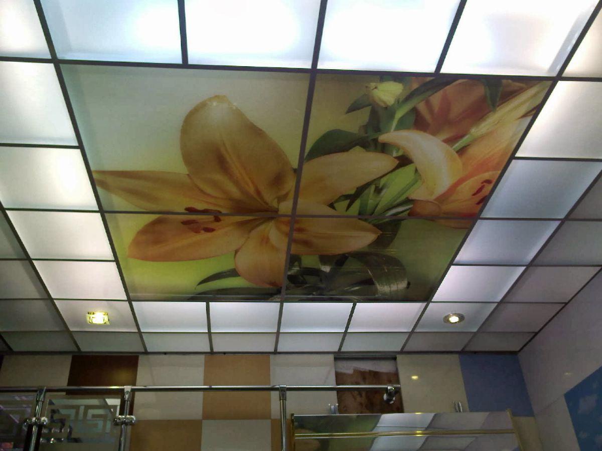 Потолки современной квартиры. Подвесные модульные конструкции, обшивка потолка. Натяжные потолки 4627