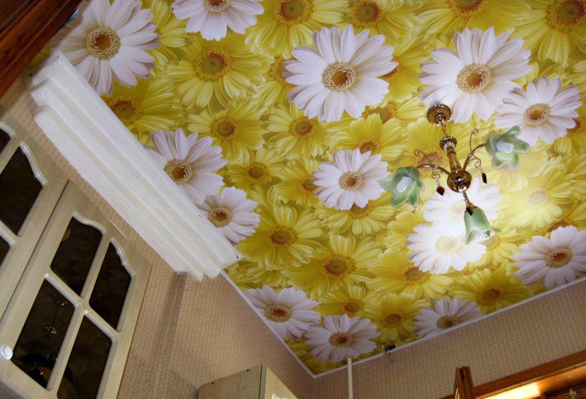 Потолки современной квартиры. Подвесные модульные конструкции, обшивка потолка. Натяжные потолки 4640