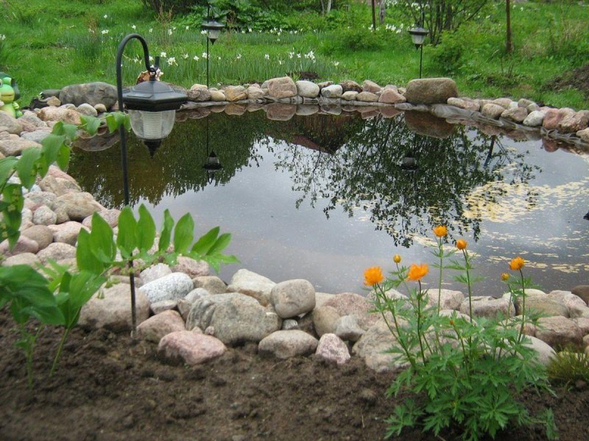 Загородный пруд своими руками