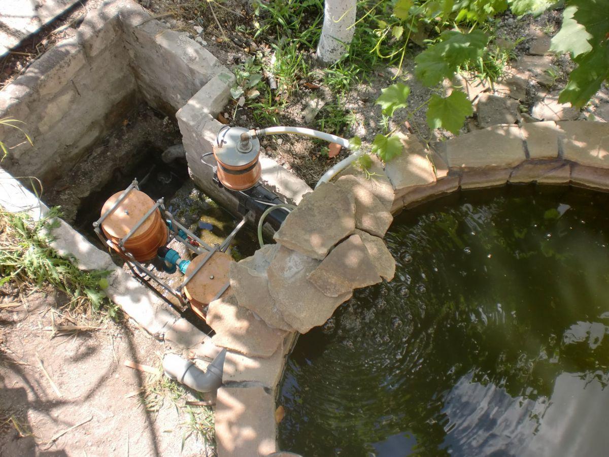 Водоемы и пруды на загородном участке. Методы очистки пруда, виды фильтров 4981