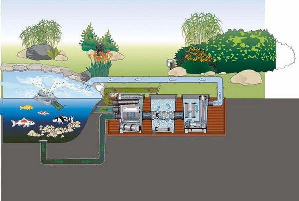 Водоемы и пруды на загородном участке. Методы очистки пруда, виды фильтров 4984