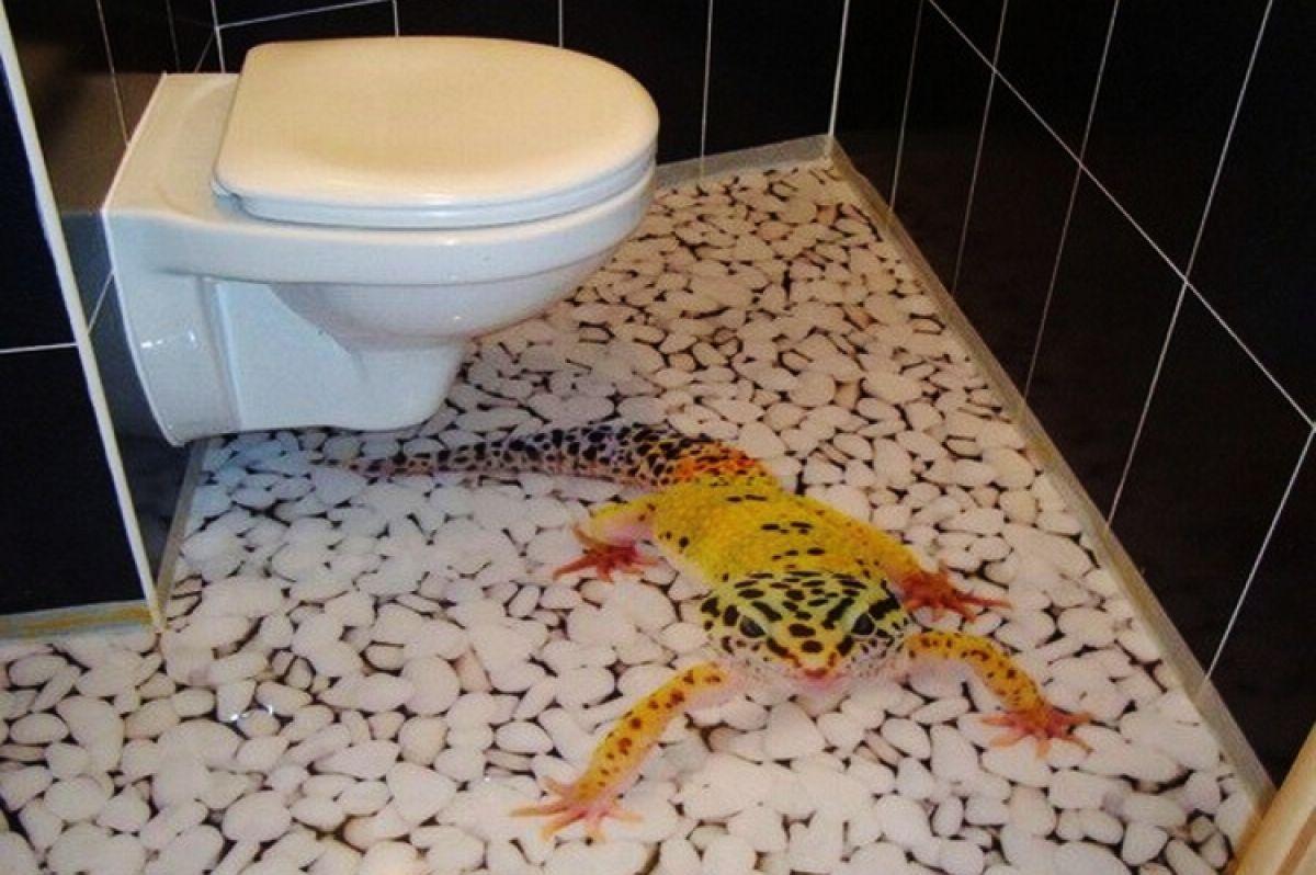 Картинки для пола в туалете