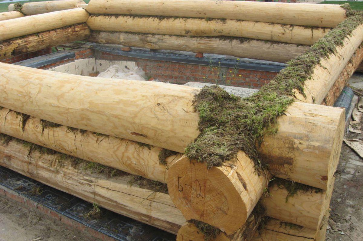 Герметизация деревянных швов 10303