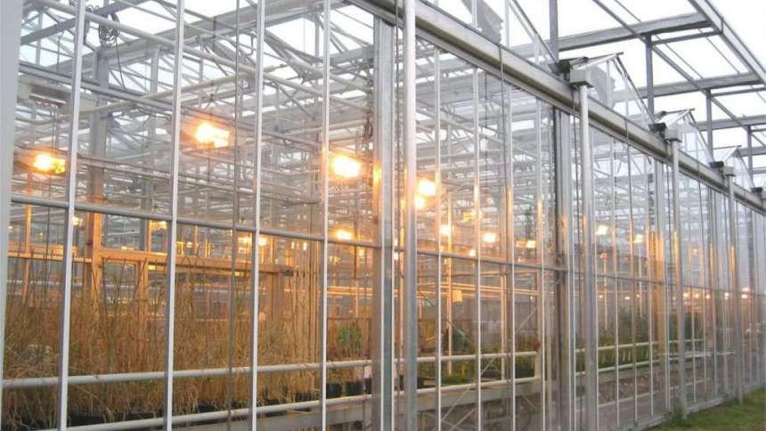 Садовые теплицы: виды конструкций, материалы, правила монтажа