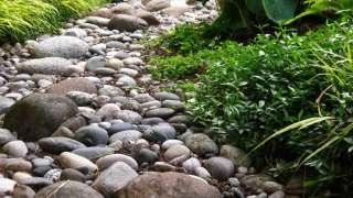 Французский дренаж, сухие ручьи и ливневая канализация