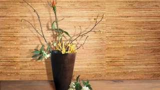 Бамбуковые обои – комфортные тропики в квартире. Свойства, технология отделки, плюсы и минусы.