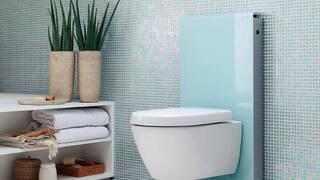 Дизайн туалета 2021