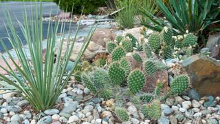 Песчаный сад